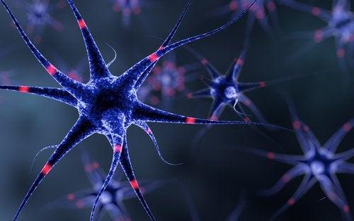 6 способів зміцнити нервову систему