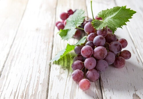гілка червоного винограду