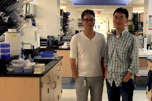 дослідники лікування раку легенів