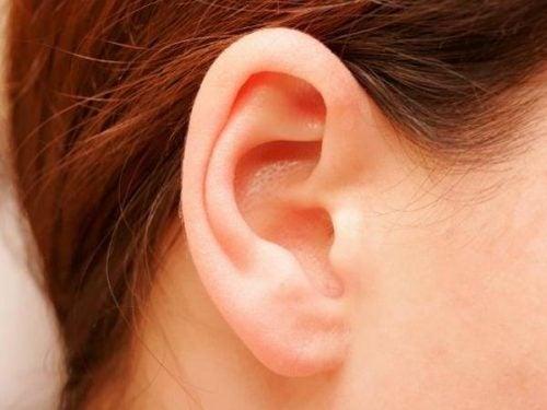 Форма вуха