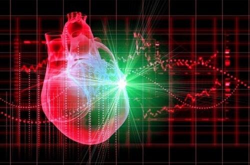 серце жінки