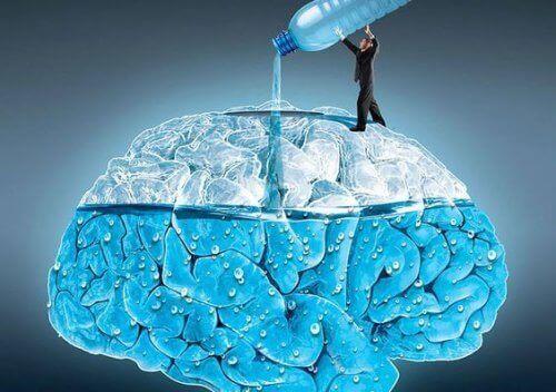 Як регулярне вживання води впливає на мозок