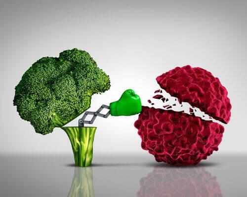 броколі запобігає раку