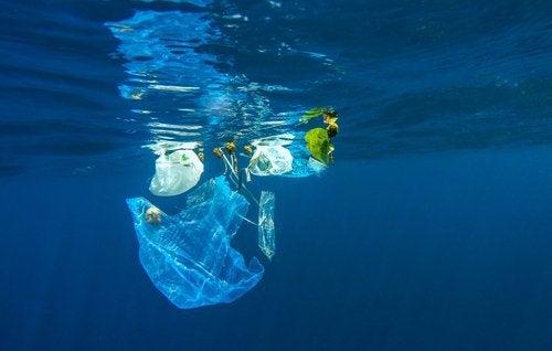 пластик забруднює океани