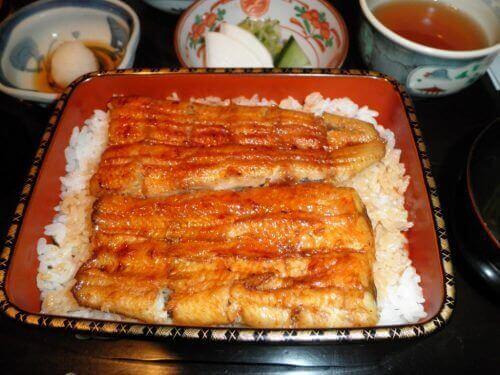 риба вугор