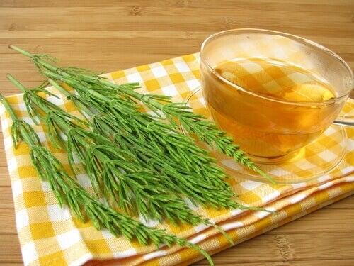 чай з хвощем для очищення нирок