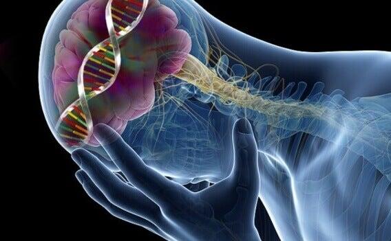 Низький рівень серотоніну: 9 несподіваних наслідків
