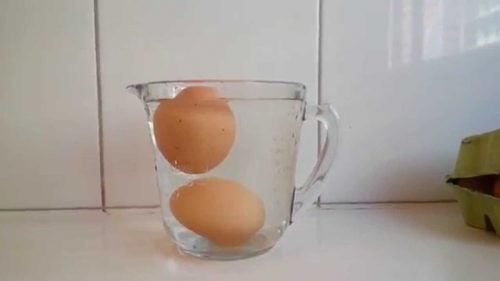 свіжість яєць можна перевірити за допомогою посудини з водою