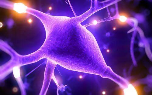 5 фактів про користь магнію для покращення розумових здібностей