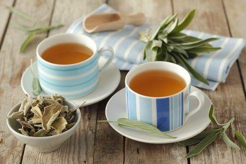 чай з шавлії для лікування синдрому подразненого кишківника