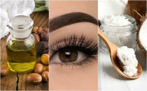 6 рослинних олій, щоб мати красиві вії