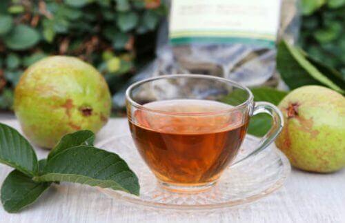 чай з листя гуаяви, щоб знизити рівень цукру в крові