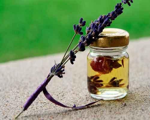 ефірна олія лаванди для здоров'я людини