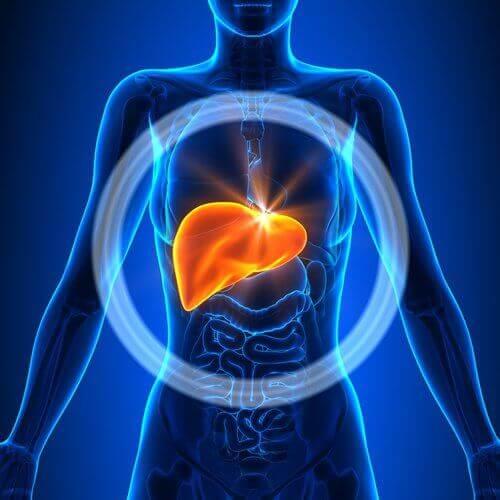 чому виникає запалення печінки