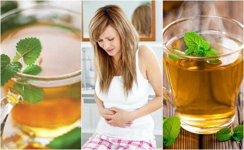 5 найкращих чаїв для лікування синдрому подразненого кишківника