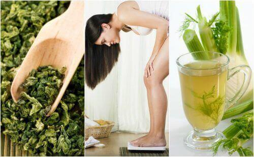 Лікувальні рослини для схуднення