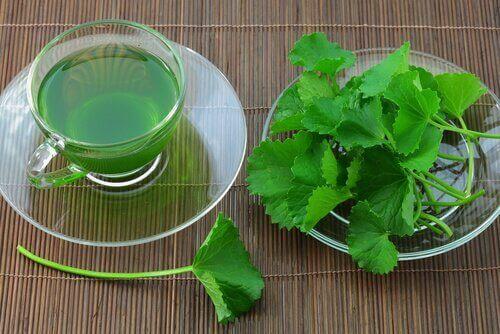 чай з селери для очищення організму