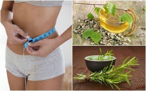Корисні рослини, які допоможуть схуднути