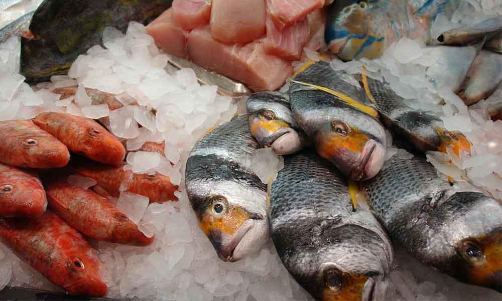 небезпечна риба містить ртуть