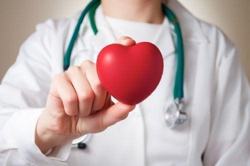 переваги кавуна для серця