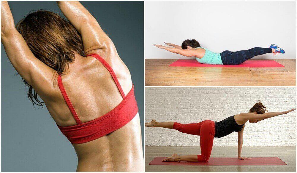 Вправи без гантелей на спину