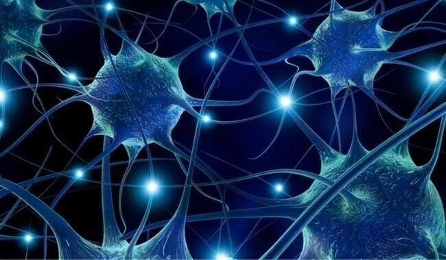 їсти фісташки проти нейродегенеративних проблем