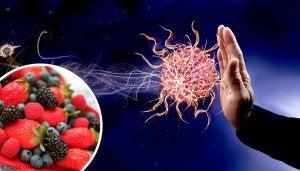 9 продуктів, щоб зміцнити імунну систему