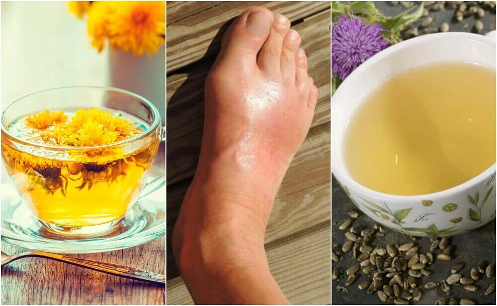 5 чаїв для виведення сечової кислоти