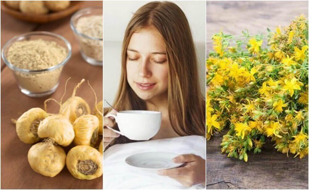 5 лікарських рослин, які посилюють статевий потяг
