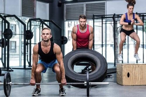 станова тяга для підвищення тонусу м'язів