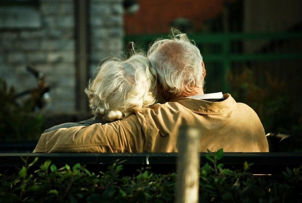 Дієта MIND: як запобігти синдрому Альцгеймера?