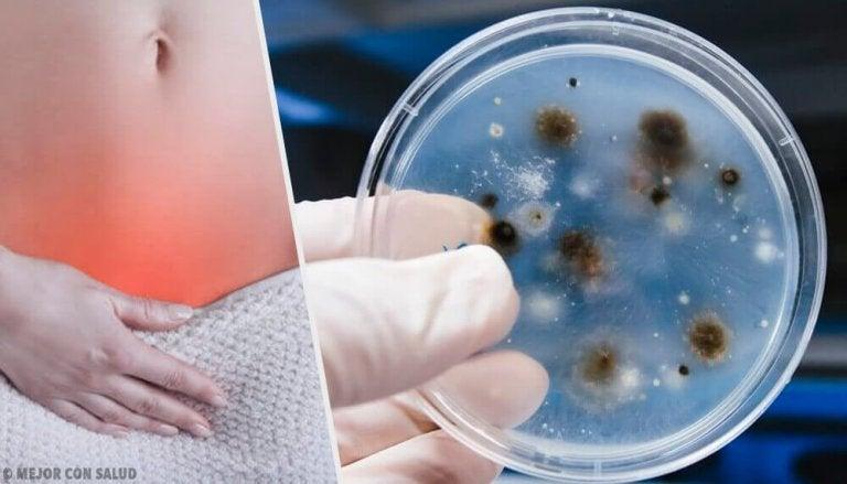 Дізнайтеся про типи та причини вагінальних інфекцій