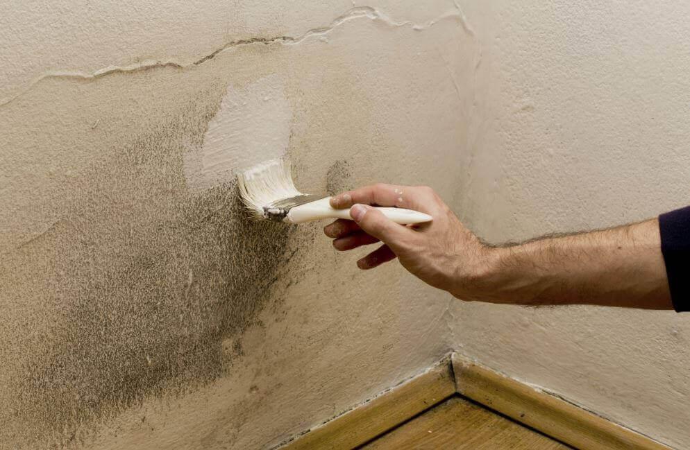5 способів позбутися вологи вдома