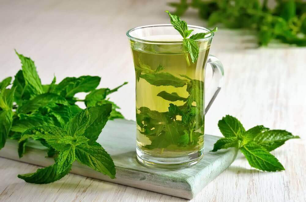 Дізнайтеся про численні корисні властивості м'ятного чаю