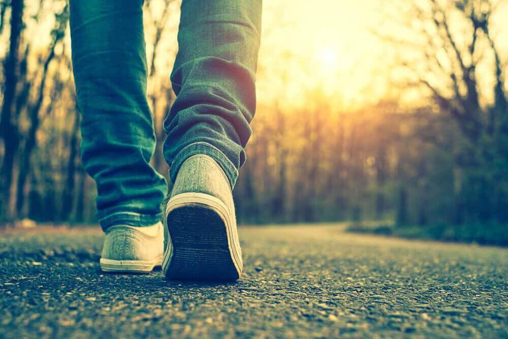 користь щоденних прогулянок