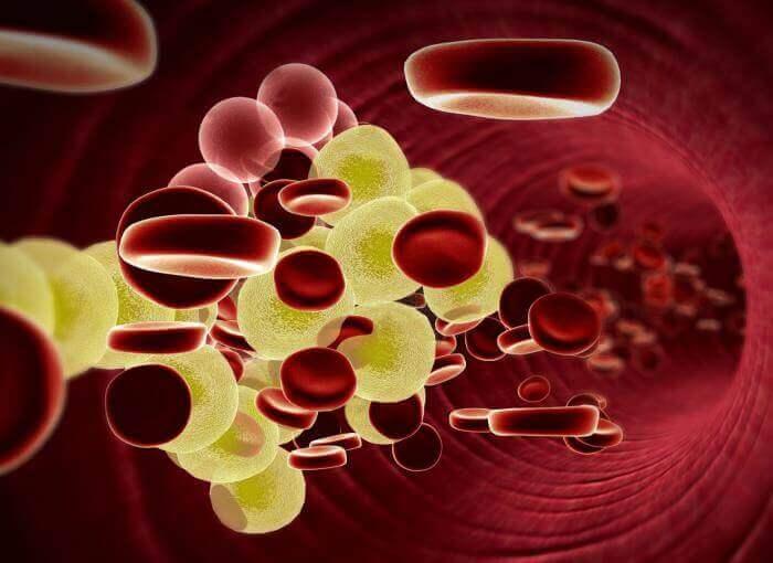 бореться з високим рівнем холестерину