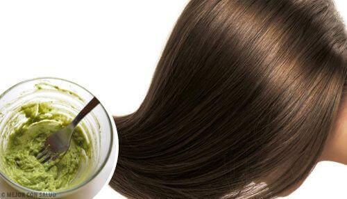 як приготувати натуральні засоби для зволоження волосся