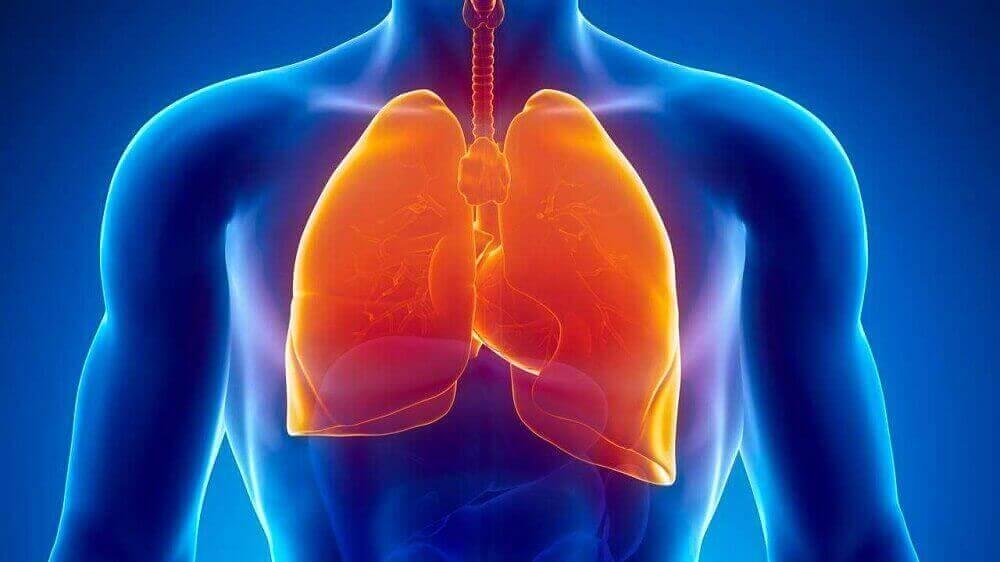 хворі легені