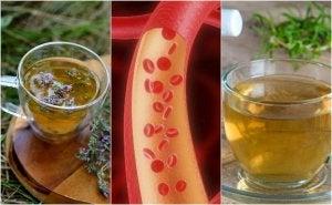 Трав'яні чаї для очищення артерій природним способом