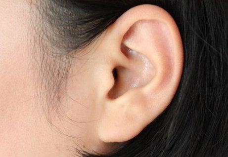 засіб з м'яти від болю у вухах