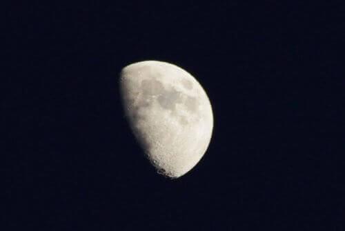 фази місяця: перша чверть