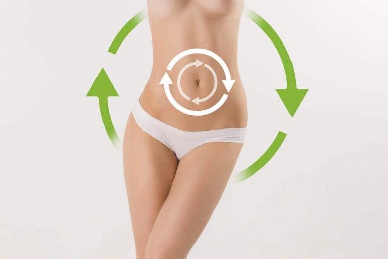 Способи прискорення метаболізму: найкращі варіанти для схуднення