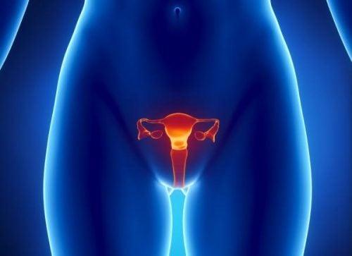 Як виявити рак яєчників?