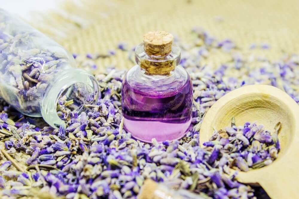 Рецепт лавандової олії та способи використання