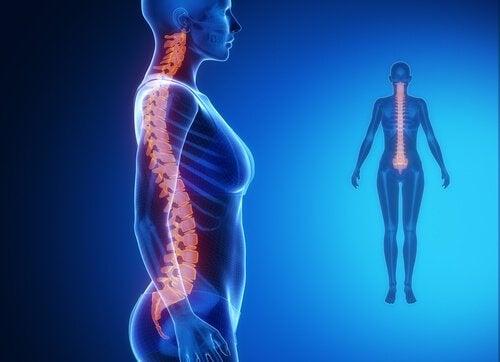 Біль в нижній частині хребта