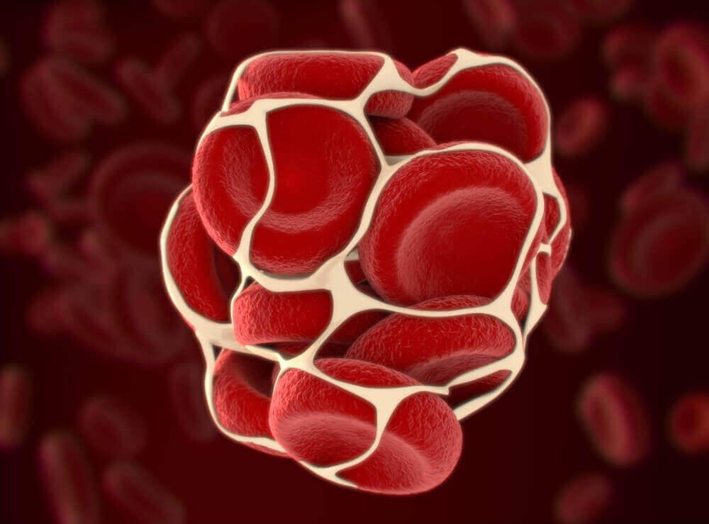 роль вітаміну K в організмі