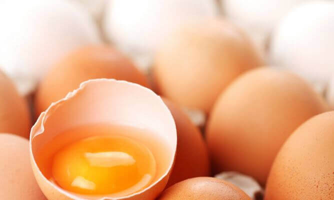 яєчний жовток для профілактики дегенерації жовтої плями