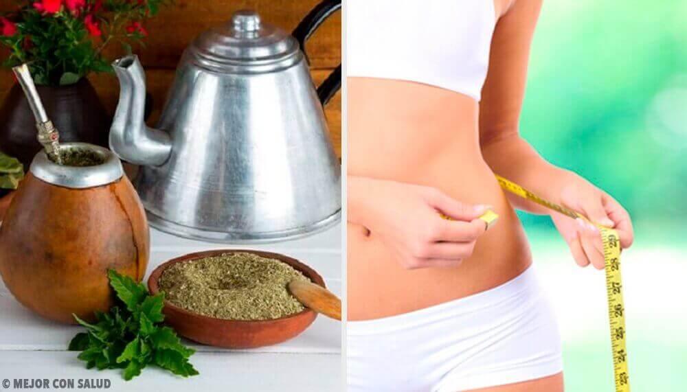 Корисні властивості мате для схуднення