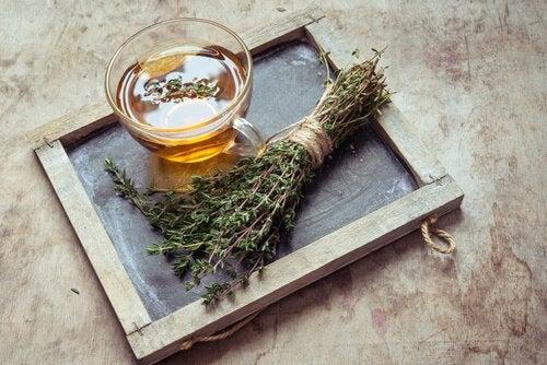 переваги чаю з чебрецю: дезінфекційний засіб