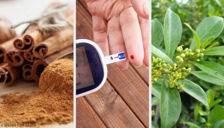5 рослинних засобів для лікування діабету